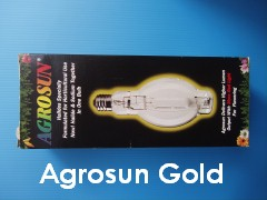 AgrosunGold